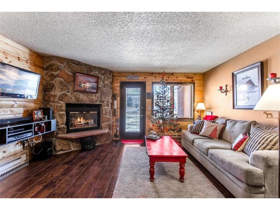 Common area with pull out couch & murphy bed. You may use the fireplace with appropriate logs (directions in unit)