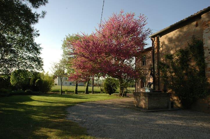 Casa nella campagna vicino a Ferrara - Gambulaga - Villa
