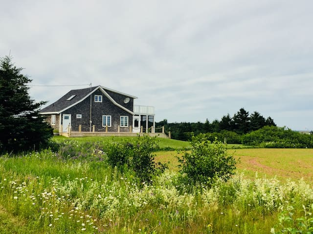Private Malpeque Waterfront