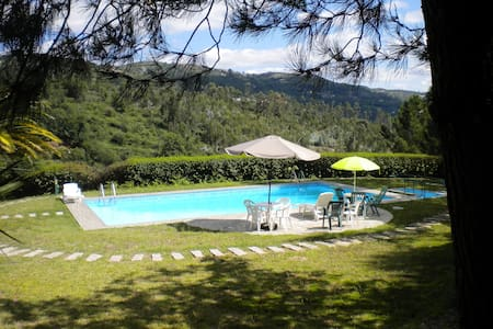 Country Home with Pool and Vineyard - Soalhães - Nature lodge