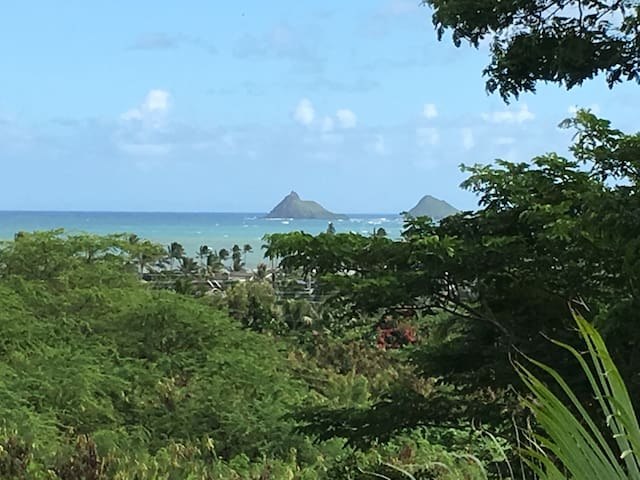 Kailua 1 bedrm view apt near beach - Kailua - Appartement