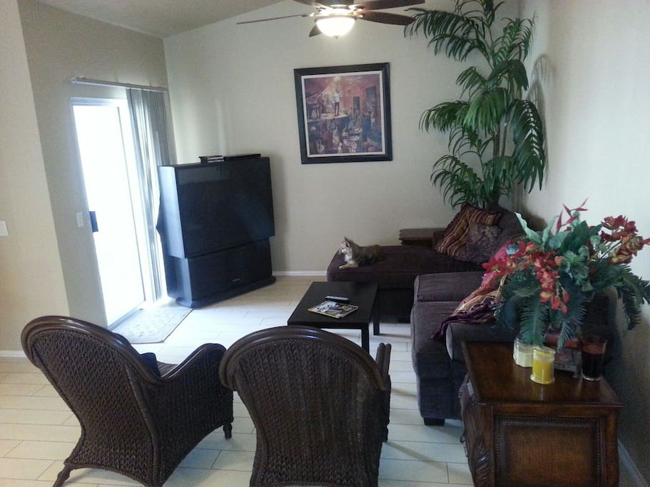 "Tall ceiling in living room with fan and 55"" TV, comfy sofa"