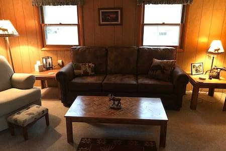 Gull Lake - Cozy 2-bedroom knotty pine cabin