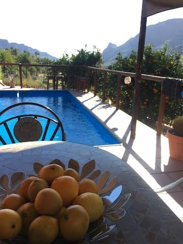 Pool auf der Sonnenterasse