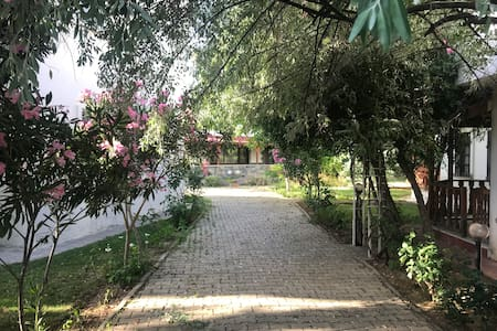 Spacious Villa with garden, 5 min from the sea.