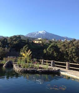 Urlaub im Paradies - Riendas Vivas - La Guancha - Appartement