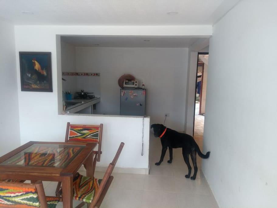 Sala y Cocina, al fondo se observa nuestro perro Rufo
