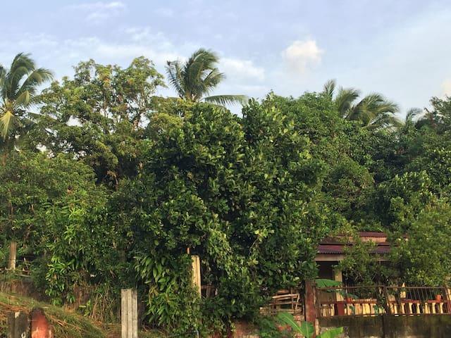 Province Lifestyle - Bataan - Rumah