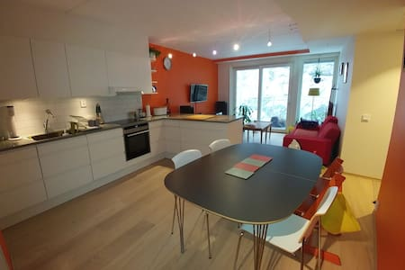 Modern flat in the center of Oslo - ออสโล