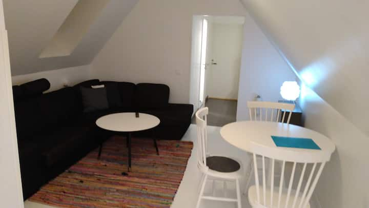 Room for rent - short or long term - Lund (3)