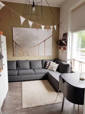 Firs floor. Big sofa in kitchen room