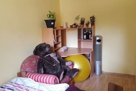 Gästezimmer in 2er WG mit Katzen, nördl. Zellerau - Würzburg