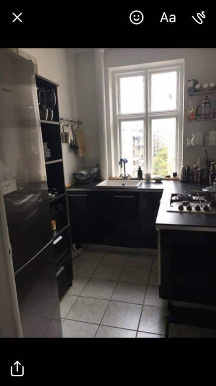 Apartment in an attractive area in Copenhagen