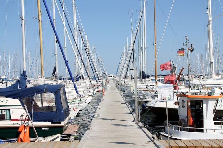 die neue Marina mit Bootsstegen