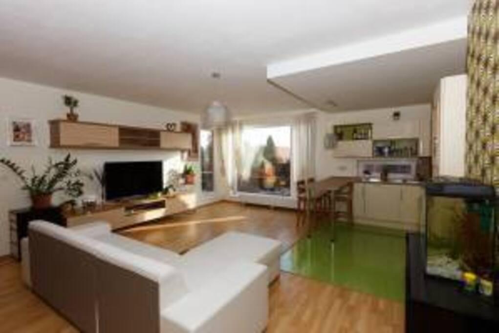кухня+зал