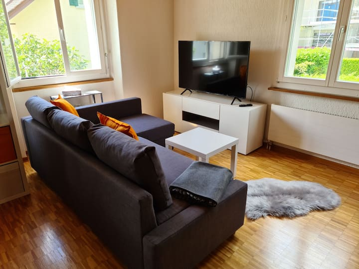 Studio 1 bedroom in Vitznau