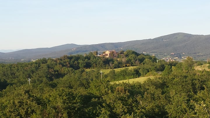Apartment with wiew between Siena and Volterra