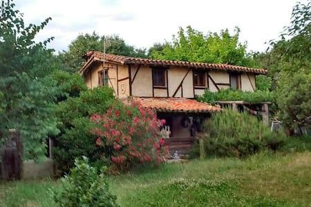 Casa Kaira (Casa Entera)Artist home - Casa