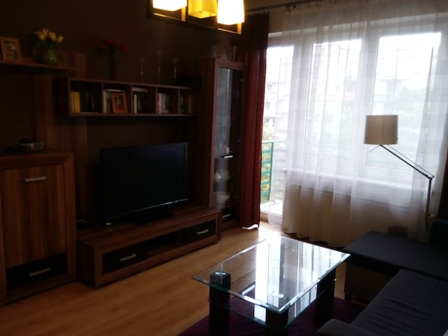 Cozy flat next to Spodek / Katowice Centrum (45m2) - Katowice - Apartamento
