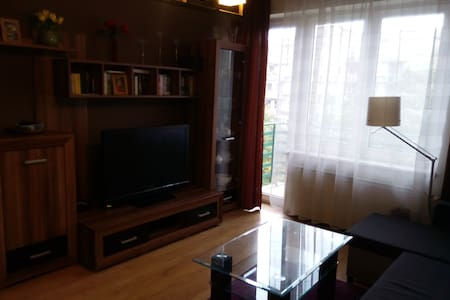 Cozy flat next to Spodek / Katowice Centrum (45m2) - Katowice - Apartmen