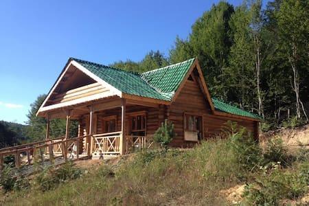 (Anştayn Kamp) Doğa ve siz - Candarlı Köyü - Treehouse
