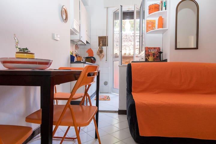 Bologna: luminoso appartamento centro storico
