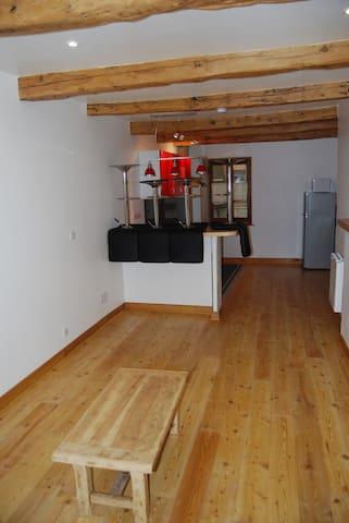 T2 MEUBLE VIEILLE VILLE CITE VAUBAN - Villar-Saint-Pancrace - Apartment