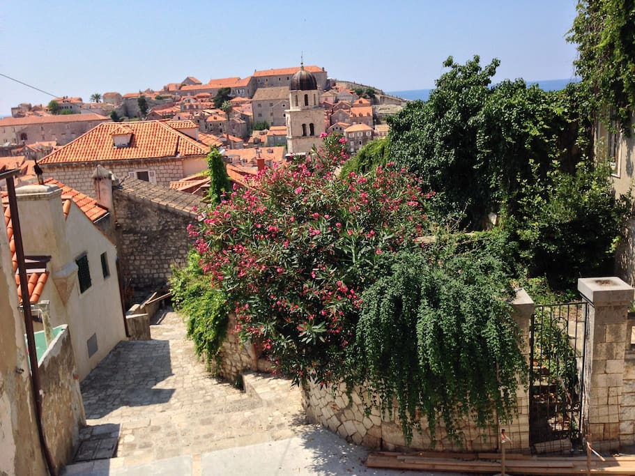 View from House Hilda 2