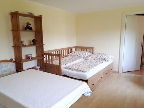 Bad Vöslau 2-bedroom vacation home