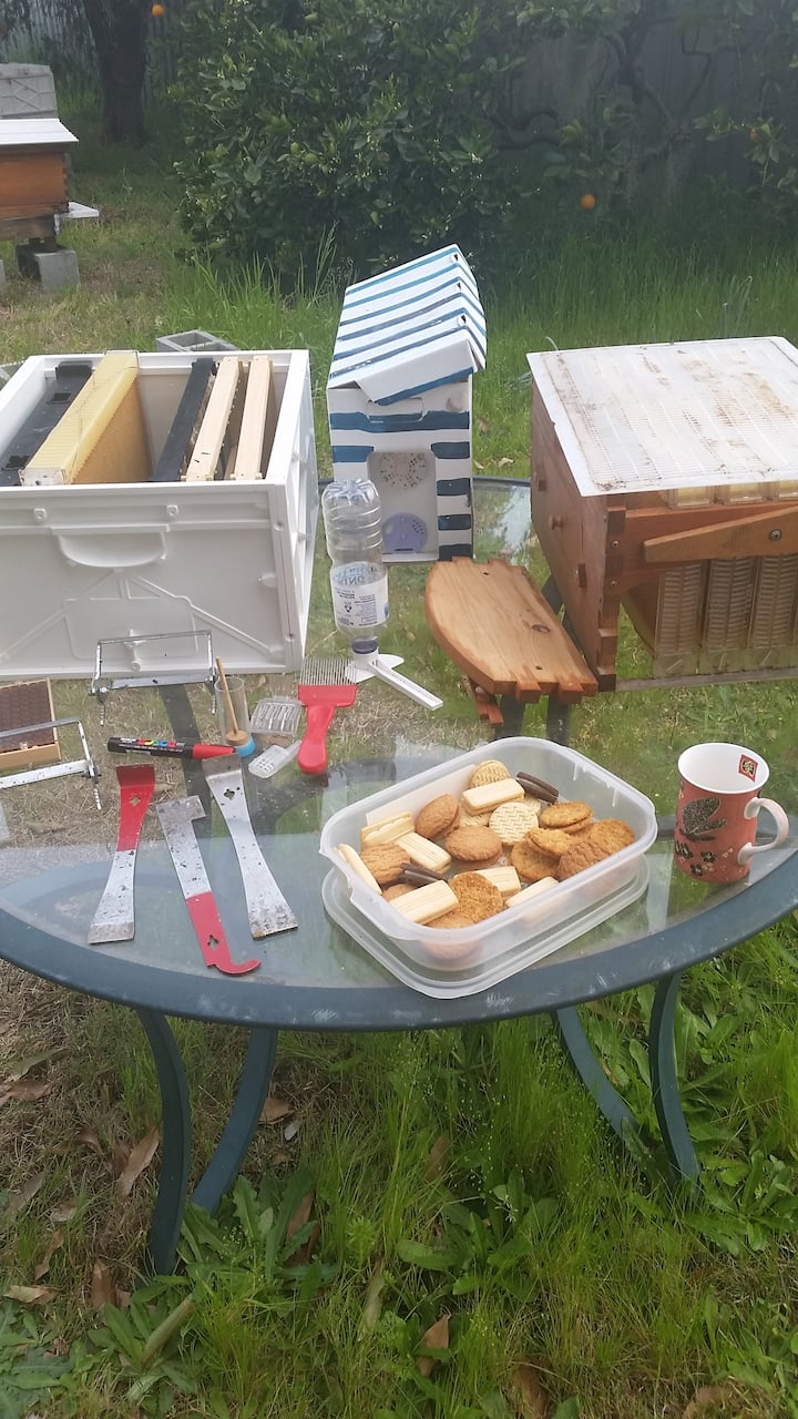 Tools and equipment for beekeeping