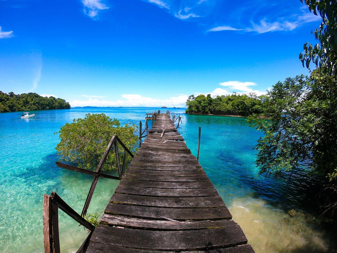 Parque Nacional Coiba, ofrecemos tours a la isla de ecoturismo