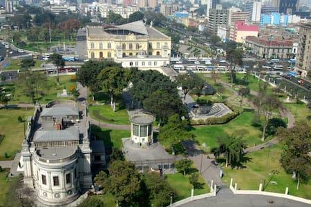 LINDO DEPARTAMENTO EN SAN BORJA, ZONA VERDE - Distrito de Lima
