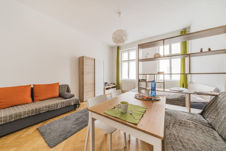 A nice apartment near the centre