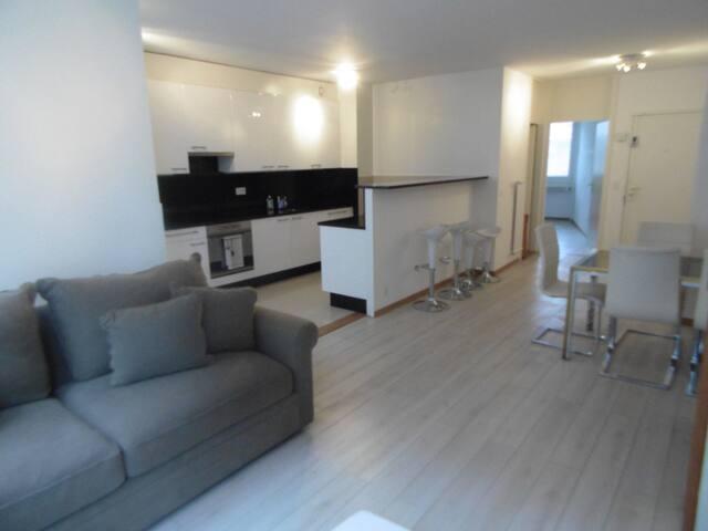 Spacieux appartement à 2 pas du lac - Genewa - Dom