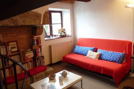 Petite maison au cœur des marais - Guérande