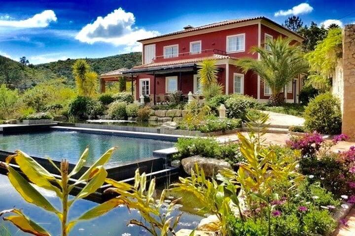 Casa Caldas   Private heatable pool in Monchique!