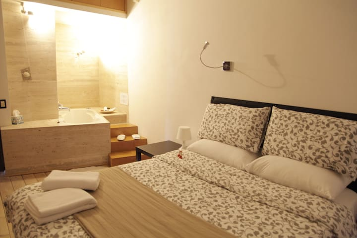 Luxury room w/ private bathroom & in-room jacuzzi