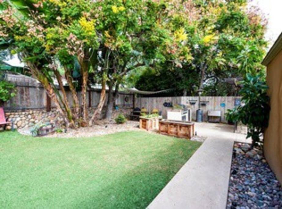Backyard area