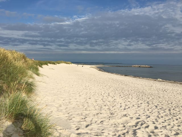 Ferienhaus an der Ostsee Strandnähe im Grünen