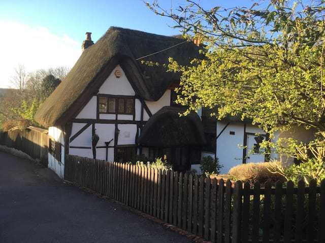 Little Thatch - charming cottage - Marlborough - Casa