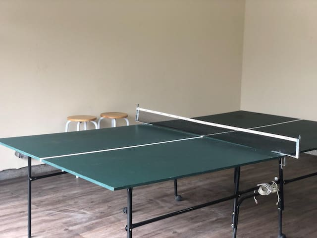 Game Room - located in the garage with ping pong table, exercise bike, kids table, and basketball Pop-a-Shot