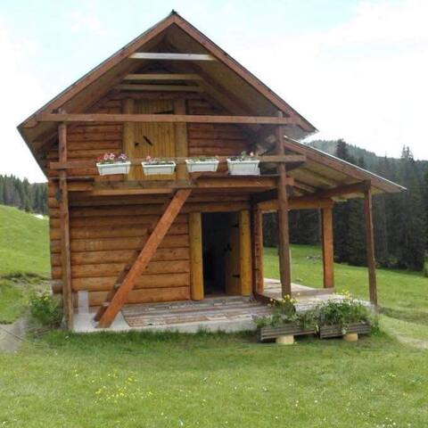 Samelova koliba unique warm cottage wild beauty