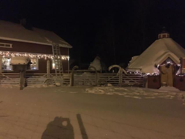 Tiikun TiiPii, Tiikku Mäkitalo