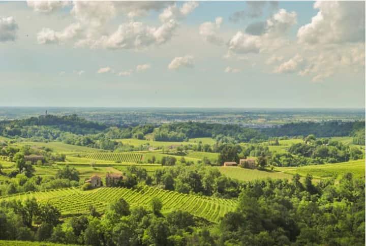 Una vista mozzafiato sulle colline del Prosecco