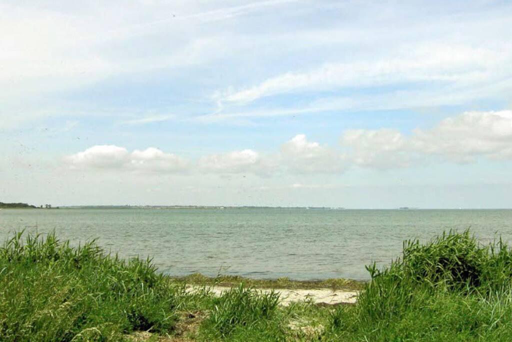 Fredelig og ugeneret strand