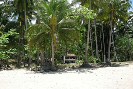 Turtle Bay Villa, near Underground River, Palawan - プエルトプリンセサ