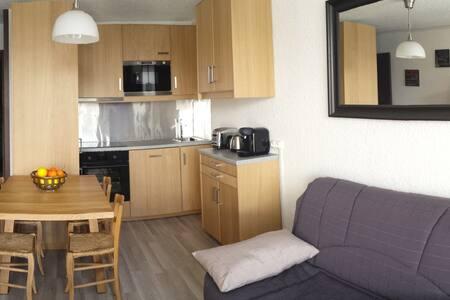 APPART.  DEUX ALPES FACE TELECABINES WIFI GRATUIT - 蒙德朗 (Mont-de-Lans) - 公寓