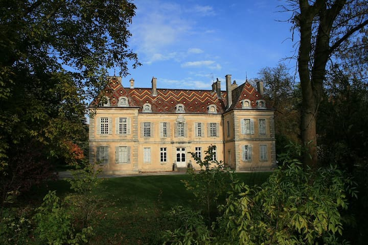 Joli studio dans un château proche Dijon, vignes