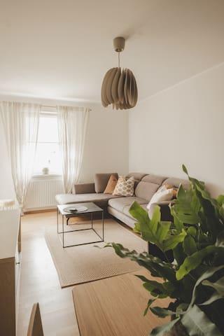 Duży pokój z TV, rozkładaną sofą, stołem