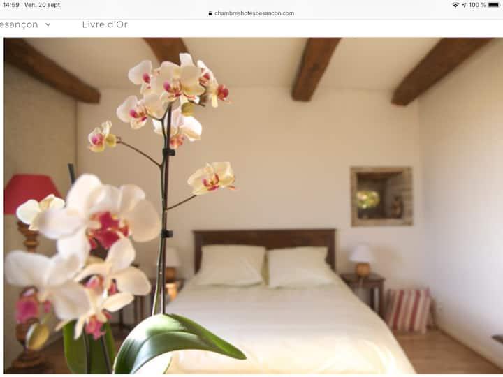 Villa duo: petit hôtel de charme, jardin, piscine.